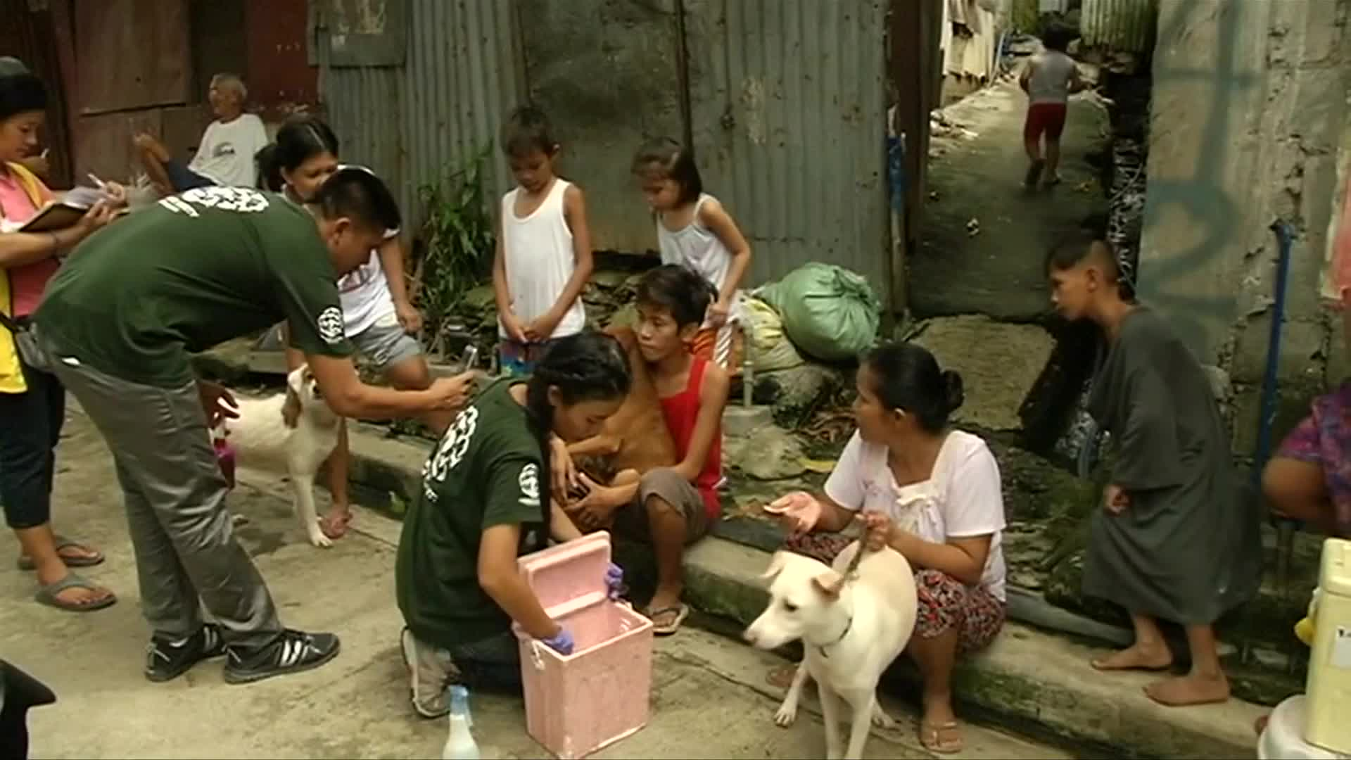 the philippine anti rabies law