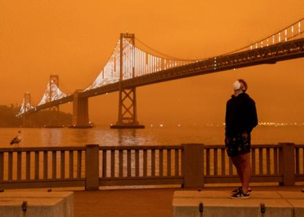 Jessica Christian/The San Francisco Chronicle via Getty Images