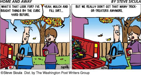 Home & Away Cartoon for Oct/26/2014