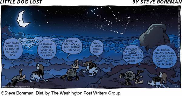 Little Dog Lost Cartoon for Nov/23/2014