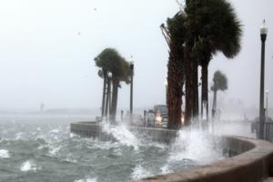 Scott Keeler/Tampa Bay Times/Tampa Bay Times via ZUMA Wire/TNS