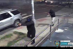 New York Police Department/TNS