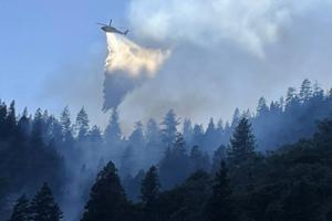 Cal Fire/TNS