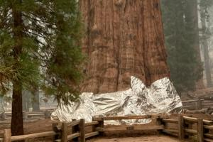 National Park Service/Handout/TNS