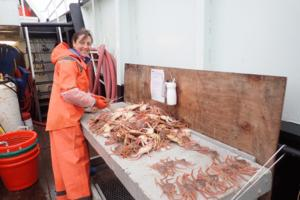 Courtesy NOAA Fisheries/TNS/TNS