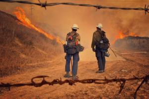 Mike Eliason/Santa Barbara County Fire Department/TNS/TNS
